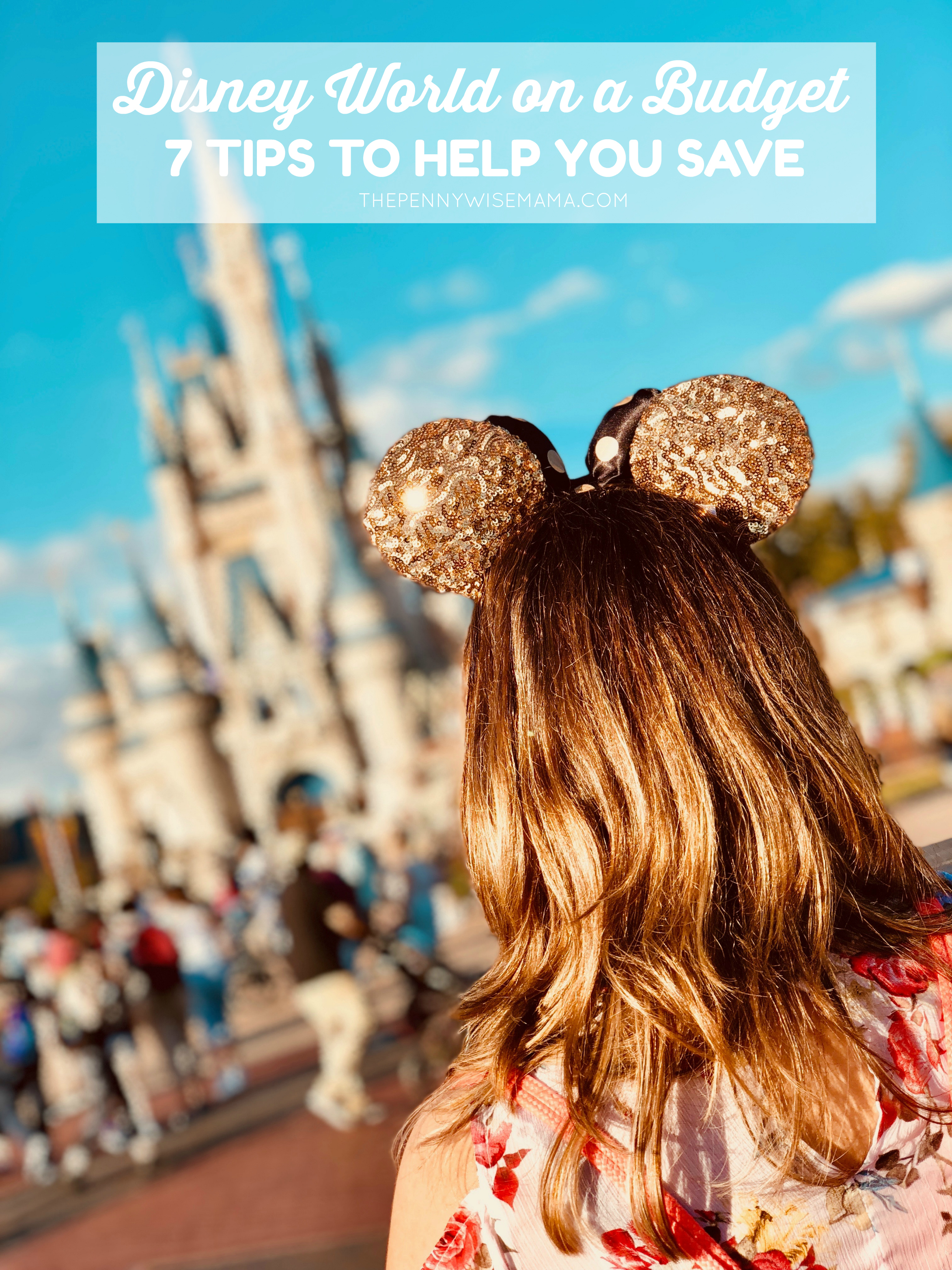 Disney World on a Budget – 7 Tips to Help You Save