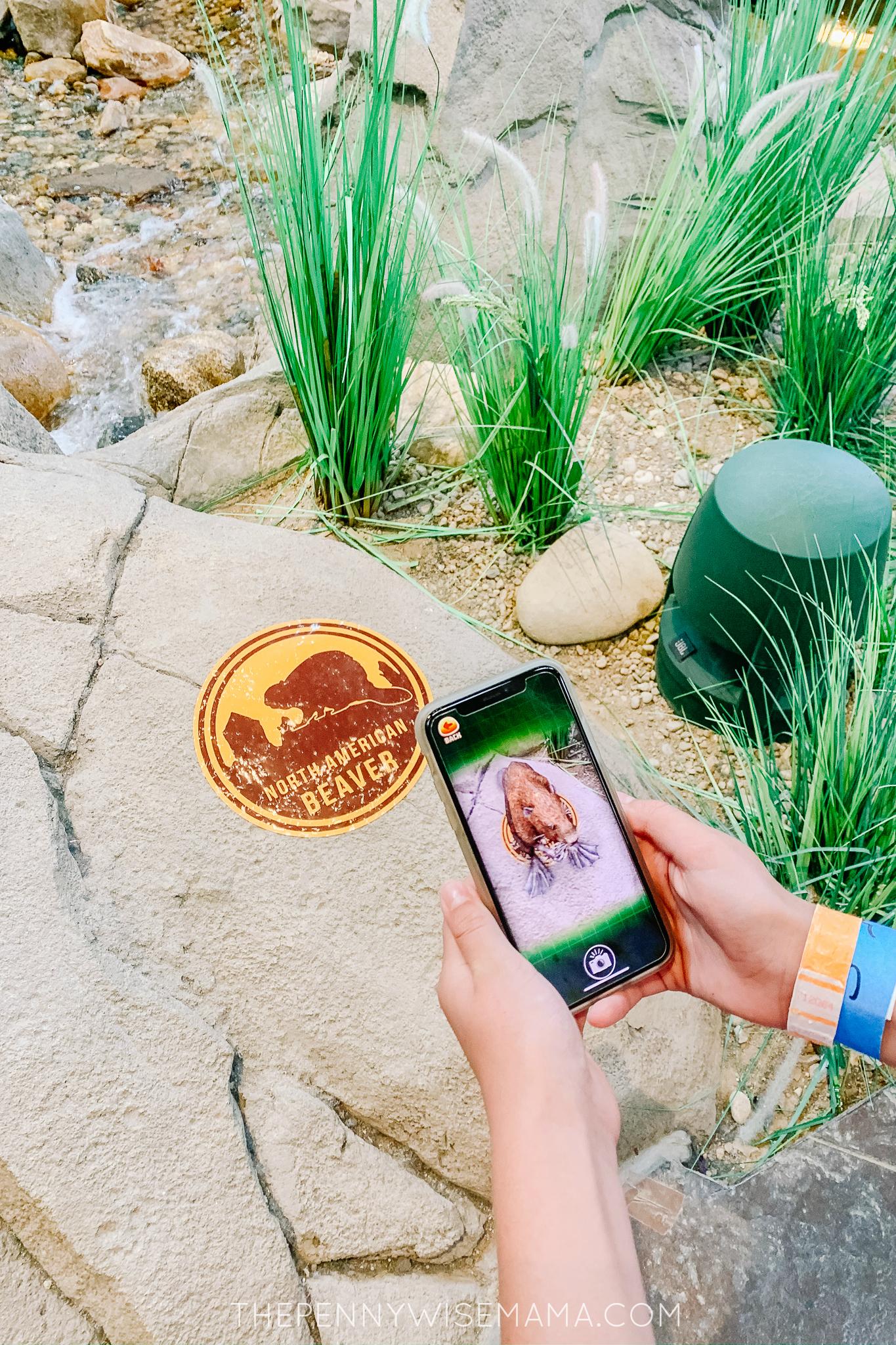 VR Scavenger Hunt at Gaylord Rockies